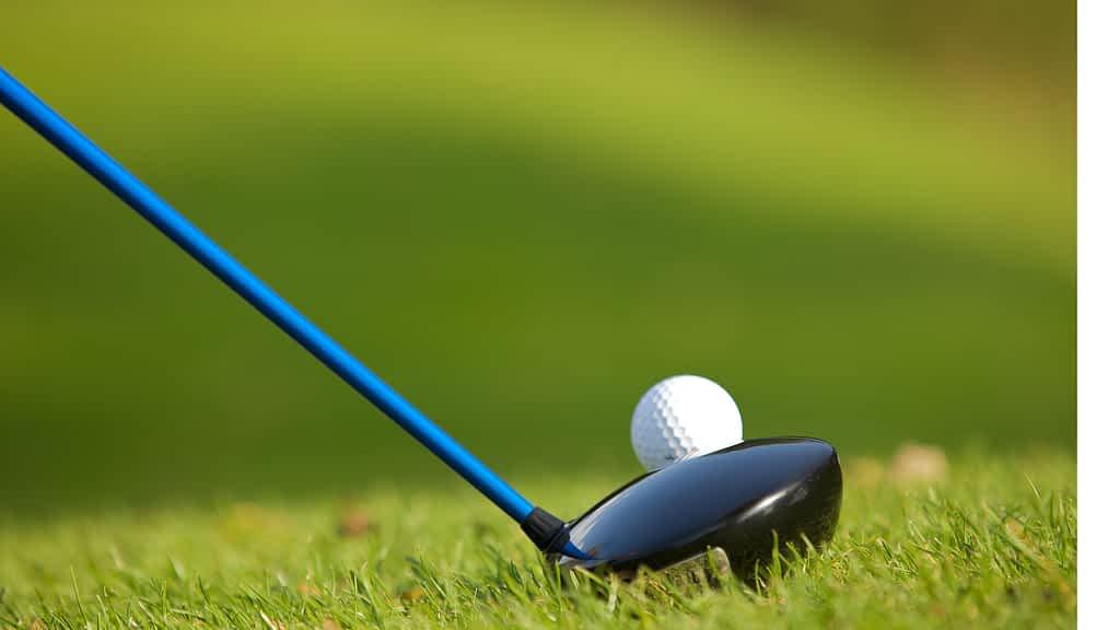 Ladies Golf- Gal Pal