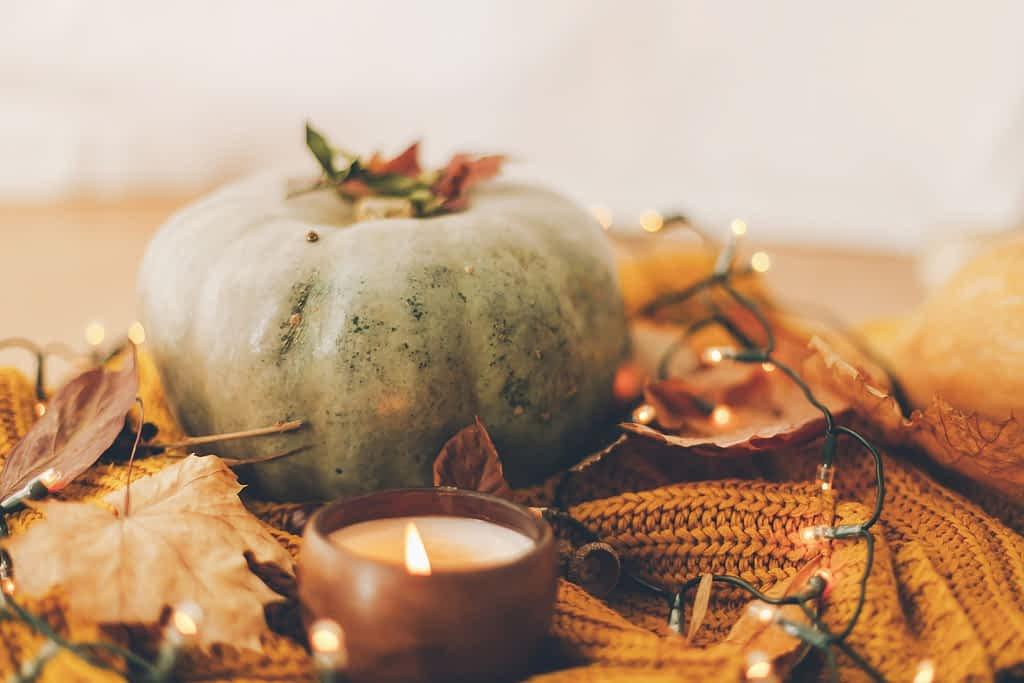 Hello autumn. Cozy moody image