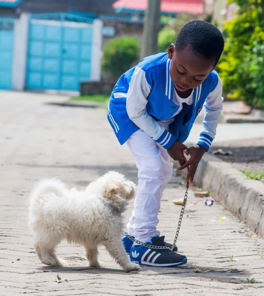 why kids need a dog